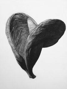 liuling-organic-shape3
